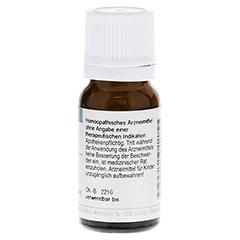 STRYCHNOS nux-vomica C 30 Globuli 10 Gramm - Rückseite