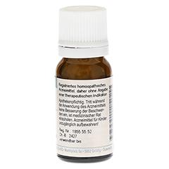 ARGENTUM NITRICUM C 30 Globuli 10 Gramm N1 - Rückseite