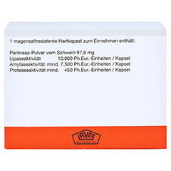 Pankreatin Laves 10000 Ph.Eur.-Einheiten 100 Stück N2 - Rückseite
