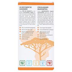 INGWER GINJER Ingwerwürfel Orange 60 Gramm - Rückseite