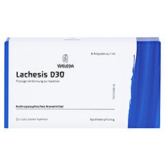 LACHESIS D 30 Ampullen 8x1 Milliliter N1 - Vorderseite