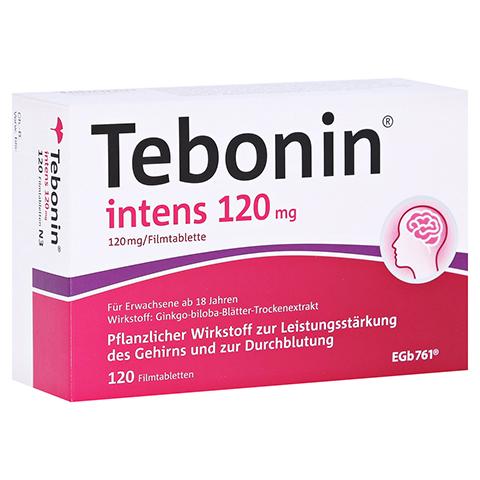 Tebonin intens 120mg 120 Stück N3
