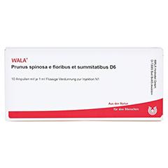 PRUNUS SPINOSA E floribus et summitatibus D 6 Amp. 10x1 Milliliter N1 - Vorderseite