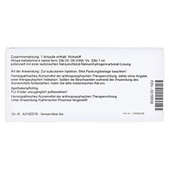 ATROPA belladonna e Radix D 6 Ampullen 10x1 Milliliter N1 - Rückseite