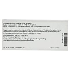 BULBUS OLFACTORIUS GL D 5 Ampullen 10x1 Milliliter N1 - Rückseite