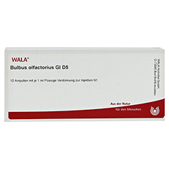 BULBUS OLFACTORIUS GL D 5 Ampullen 10x1 Milliliter N1 - Vorderseite