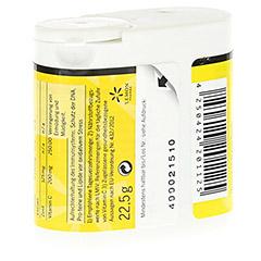Apropolis Dragees mit Zimt und Vitamin C 22.5 Gramm - Rückseite