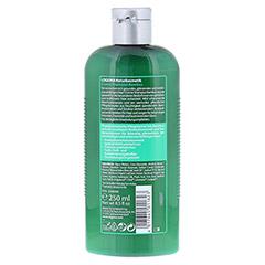LOGONA Creme-Shampoo Bambus 250 Milliliter - Rückseite