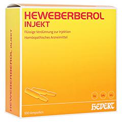 HEWEBERBEROL injekt Ampullen 100 Stück N3