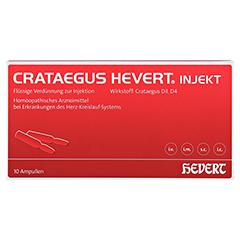 CRATAEGUS HEVERT injekt Ampullen 10 Stück N1 - Vorderseite