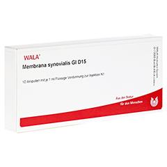 MEMBRANA synovialis GL D 15 Ampullen 10x1 Milliliter N1