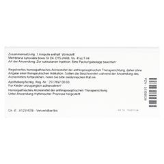 MEMBRANA synovialis GL D 15 Ampullen 10x1 Milliliter N1 - Rückseite