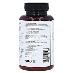 DENTAL HERBS 365 Tabletten f.Hunde 90 Gramm - Rechte Seite