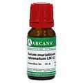 AURUM MURIATICUM NATRONATUM LM 6 Dilution 10 Milliliter N1