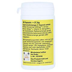 ROTKLEE ISOFLAVONE 500 mg Kapseln 60 Stück - Linke Seite