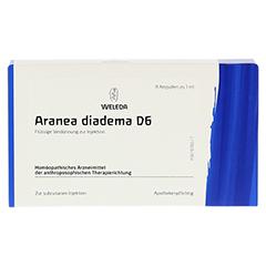 ARANEA DIADEMA D 6 Ampullen 8x1 Milliliter N1 - Vorderseite