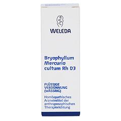 BRYOPHYLLUM MERCURIO cultum Rh D 3 Dilution 20 Milliliter N1 - Vorderseite
