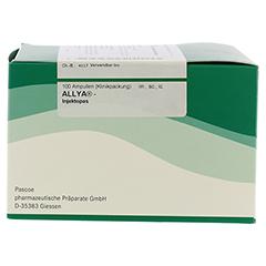 ALLYA-Injektopas Ampullen 100 Stück - Rechte Seite