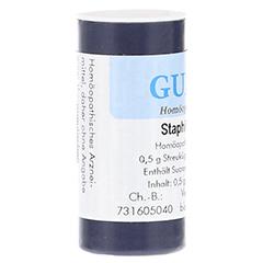 STAPHISAGRIA C 200 Einzeldosis Globuli 0.5 Gramm N1 - Rechte Seite