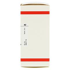 AMBRA D 12 Tabletten 200 Stück N2 - Rechte Seite
