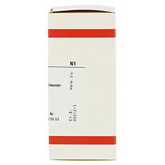 OLEANDER D 12 Tabletten 80 Stück N1 - Rechte Seite