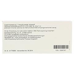 GLANDULA THYREOIDEA GL D 12 Ampullen 10x1 Milliliter N1 - Rückseite