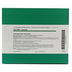 ALLYA-Injektopas Ampullen 100 Stück - Oberseite