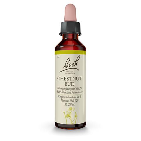 BACHBLÜTEN Chestnut Bud Tropfen 20 Milliliter
