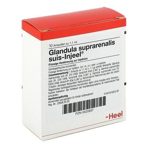 GLANDULA SUPRARENALIS suis Injeel Ampullen 10 Stück