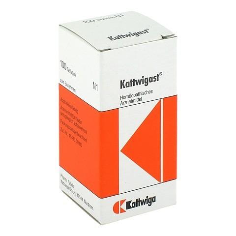 KATTWIGAST Tabletten 100 Stück