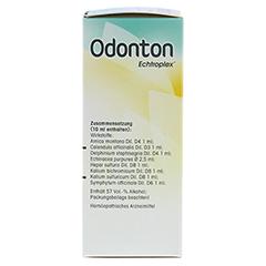ODONTON Echtroplex Tropfen zum Einnehmen 100 Milliliter - Rechte Seite