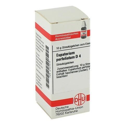 EUPATORIUM PERFOLIATUM D 4 Globuli 10 Gramm N1