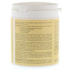 AMINOCARIN Pulver Dose 400 Gramm - Rechte Seite