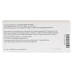 DIENCEPHALON GL D 12 Ampullen 10x1 Milliliter N1 - Rückseite