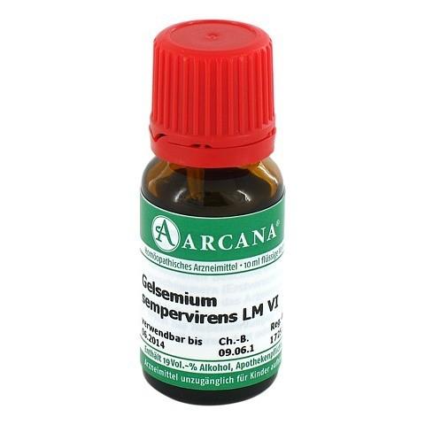 GELSEMIUM SEMPERVIRENS LM 6 Dilution 10 Milliliter N1