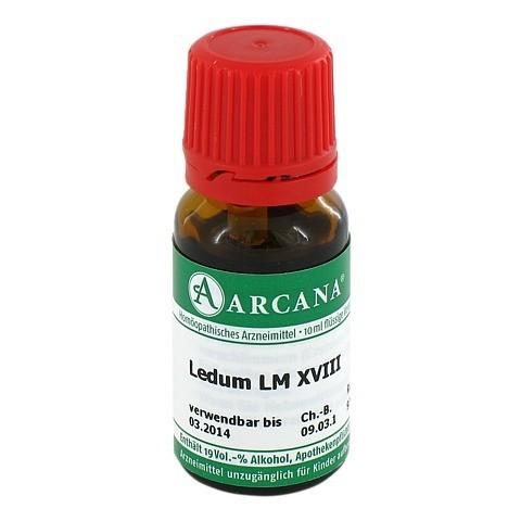 LEDUM LM 18 Dilution 10 Milliliter N1