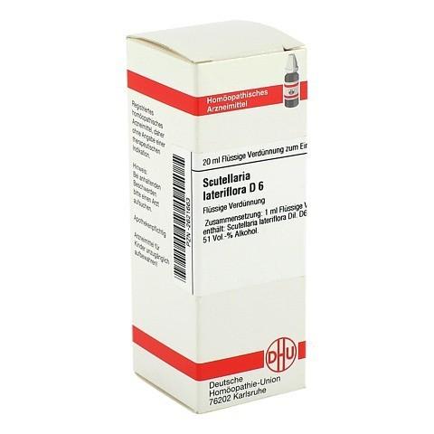 SCUTELLARIA LATERIFLORA D 6 Dilution 20 Milliliter N1