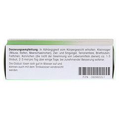 REVET H 12 Globuli f.Heimtiere 10 Gramm - Unterseite