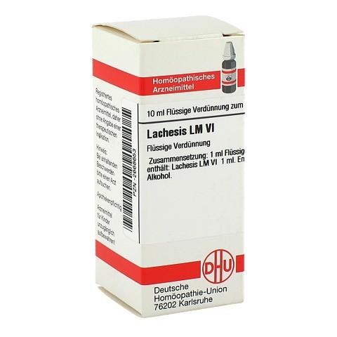 LM LACHESIS VI Dilution 10 Milliliter N1