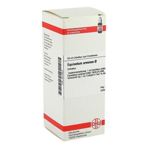 EQUISETUM ARVENSE Urtinktur 50 Milliliter N1