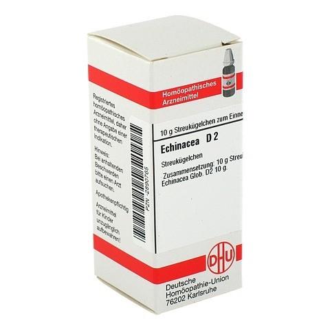 ECHINACEA HAB D 2 Globuli 10 Gramm N1