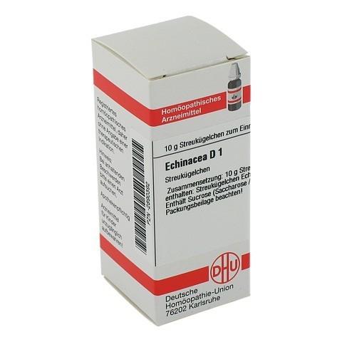 ECHINACEA HAB D 1 Globuli 10 Gramm N1