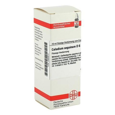 CALADIUM seguinum D 6 Dilution 20 Milliliter N1