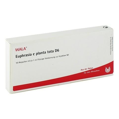 EUPHRASIA E planta tota D 6 Ampullen 10x1 Milliliter N1