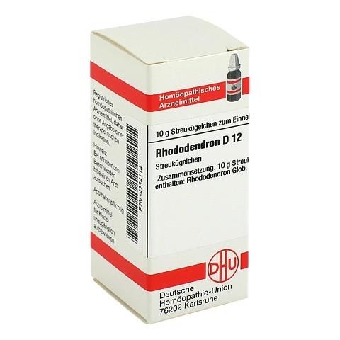 RHODODENDRON D 12 Globuli 10 Gramm N1