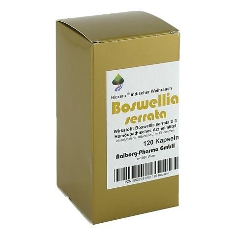 BOSWELLIA SERRATA Bioxera Kapseln 120 Stück N1