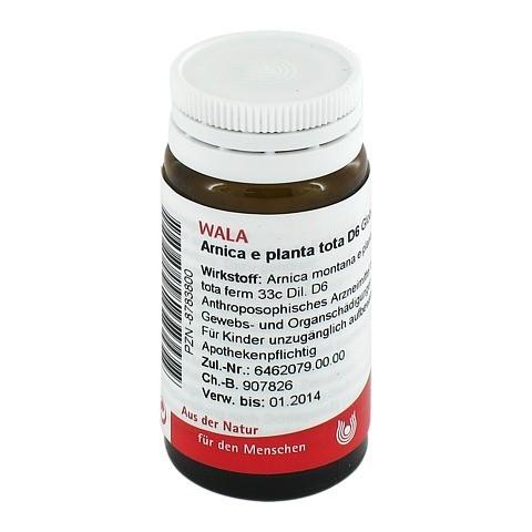 ARNICA E Planta tota D 6 Globuli 20 Gramm N1