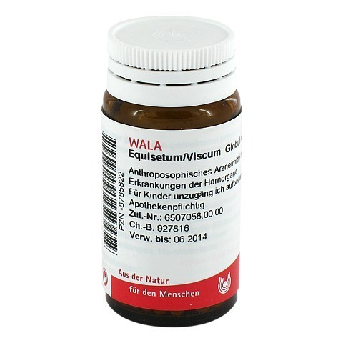 EQUISETUM/VISCUM Globuli 20 Gramm N1