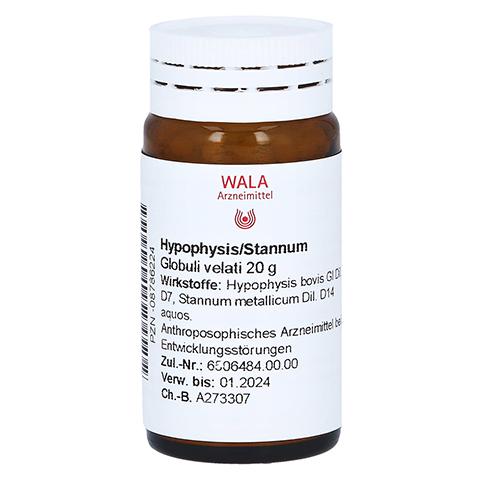 HYPOPHYSIS/STANNUM Globuli 20 Gramm N1