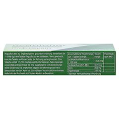 REGULOFLOR Probiotikum Tabletten 12 Stück - Unterseite